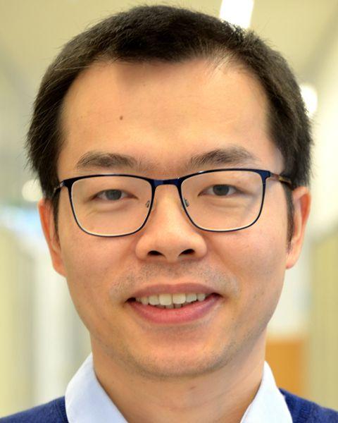 Professor Huai Wang